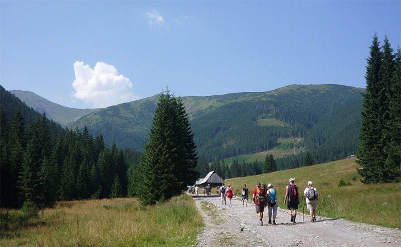 Tatrzańska dolina, którą trzeba odwiedzić: ruszajmy do Doliny Chochołowskiej!
