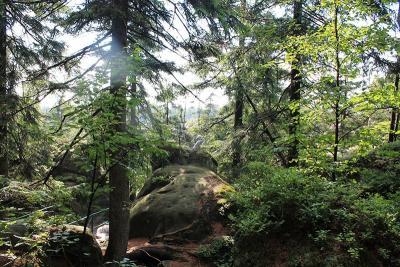 Góry Stołowe - co warto zobaczyć? Odkryj wyjątkowe miejsca malowniczego pasma górskiego w łańcuchu Sudetów!
