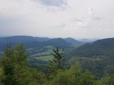 Waligóra – najwyższy szczyt Gór Kamiennych. Czym wyróżnia się ten niepozorny szczyt?