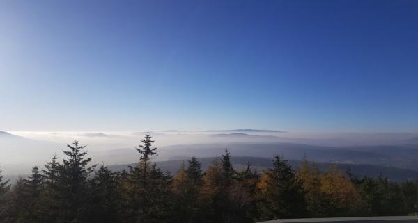 Borowa Góra - szlaki turystyczne oraz plan zwiedzania. Jakie atrakcje czekają na nas na Borowej Górze?