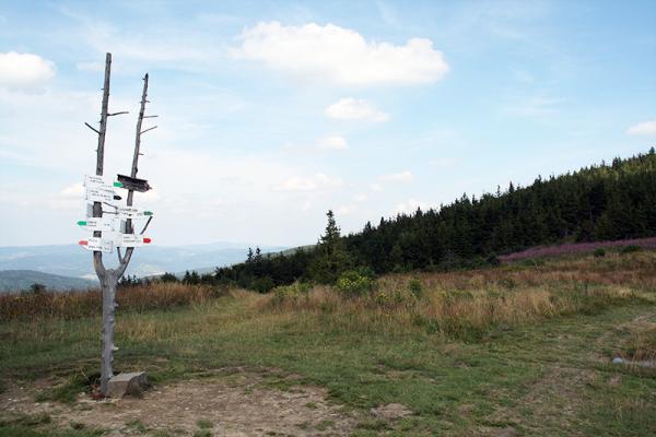 Jak przejść Główny Szlak Beskidzki (GSB) – podstawowe informacje: przygotowania, ekwipunek i etapy trasy