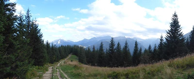 Zejście z Gęsiej Szyi na Polanę Rusinową