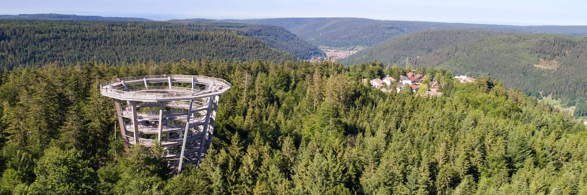 Wieża widokowa w Schwarzwaldzie w Niemczech