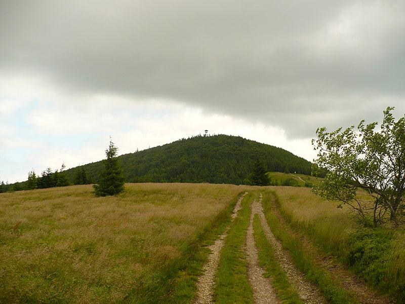 Charakterystyczny szczyt Mogielicy, przez miejscowych zwany
