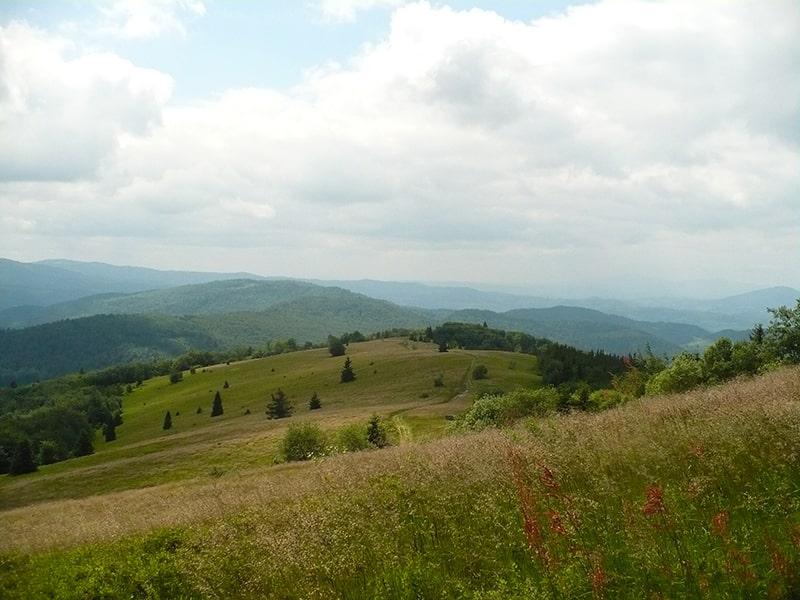 Droga przez Polanę Stumorgową na szczyt