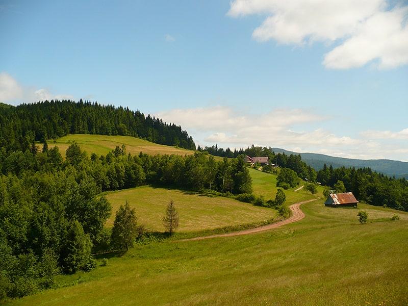 Widok z Polany Skalne, widoczna też prywatna bacówka