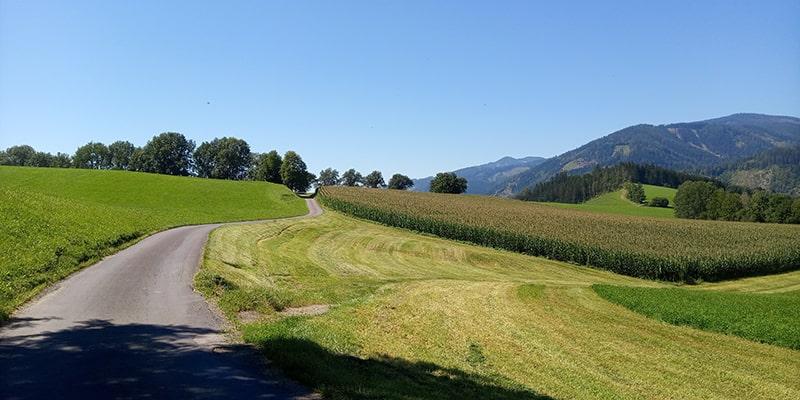 W Austrii