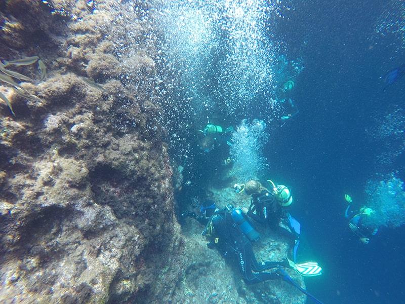 Malta pod wodą