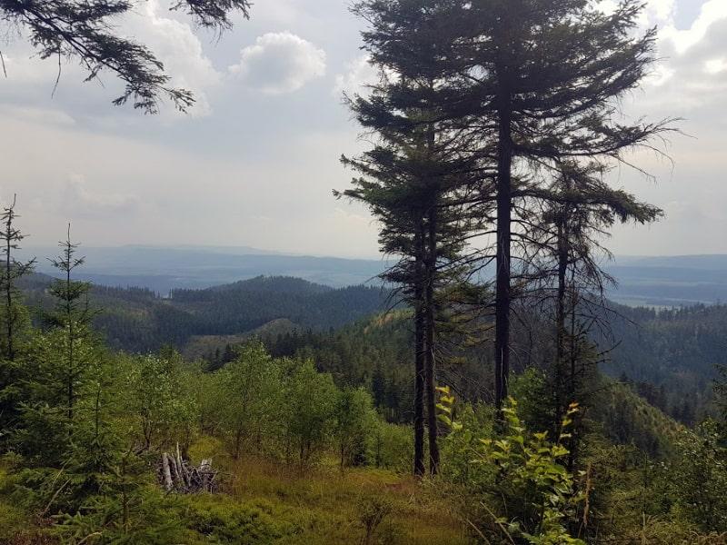 Waligóra i Góry Kamienne